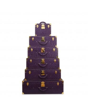 Sorrento suitcases